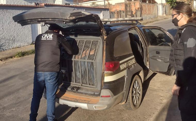 Polícia Civil prende suspeito de tráfico de drogas em Sete Lagoas durante 'Operação Narco'