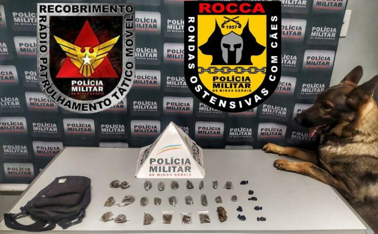 Cadela da Polícia Militar ajuda localizar drogas escondidas em lote vago de Sete Lagoas