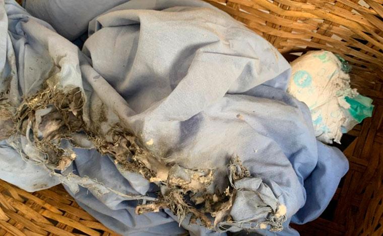 Bebê é atingida por fogo de artifício após discussão por uso de máscara em estabelecimento comercial