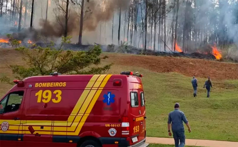 Avião cai e sete pessoas, sendo cinco da mesma família morrem no interior de São Paulo; veja vídeo