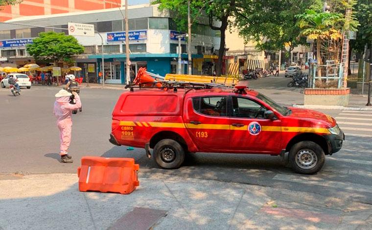 Abelhas atacam pedestres no Centro de Belo Horizonte e mulher precisa ser hospitalizada