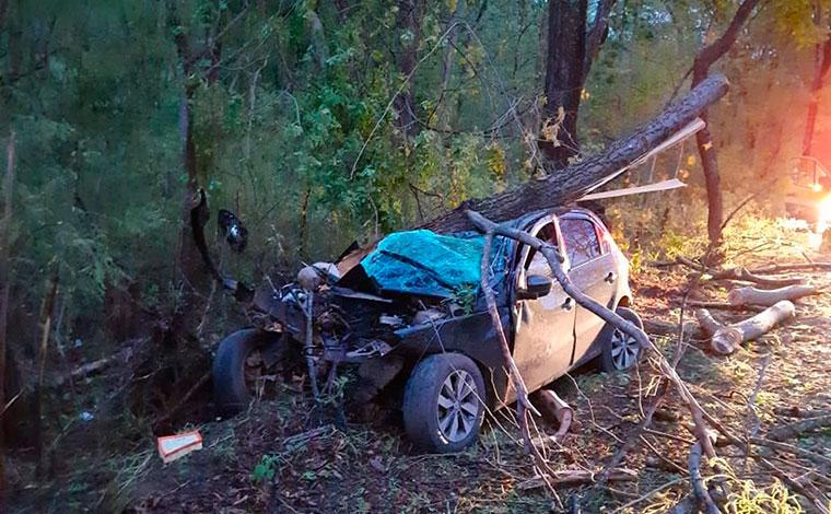 Motorista morre após perder o controle da direção e bater em árvore às margens da BR-135, em MG