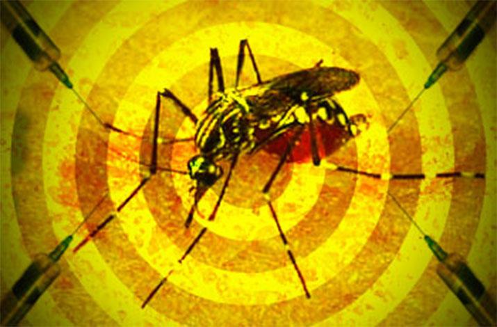 Minas decreta situação de emergência em regiões afetadas pela febre amarela
