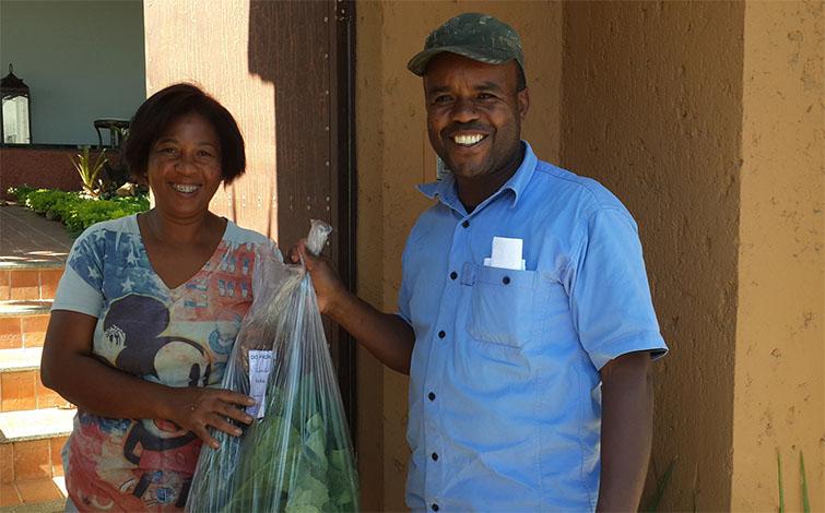 Horticultores de Sete Lagoas ganham espaço com entregas em domicílio
