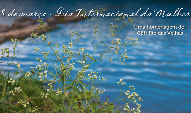 CBH Velhas homenageia mulheres que defendem bacia hidrográfica