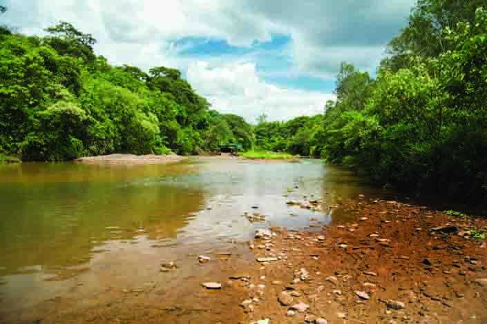 Comitês de Bacias farão parceria para tentar garantir abastecimento de água na RMBH