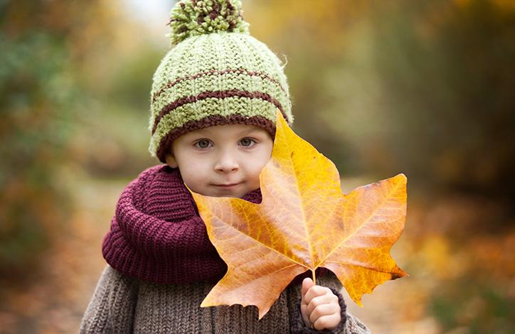 Outono começa nesta segunda-feira (20) com previsão de temperaturas amenas