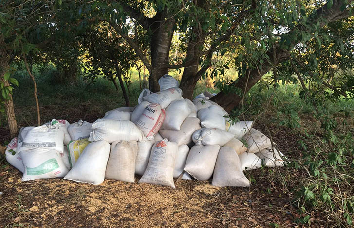 PM recupera grande quantidade de soja furtada na zona rural