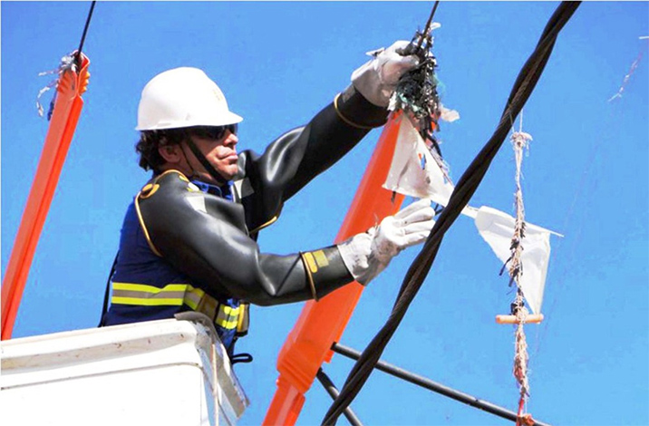 Pipas na rede elétrica prejudicam mais de 280 mil consumidores de energia