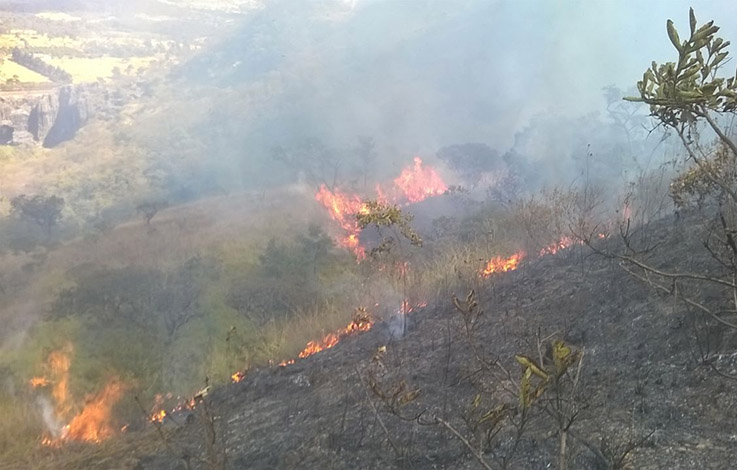 Brigadistas fazem rescaldo de incêndio no entorno da Gruta Rei do Mato