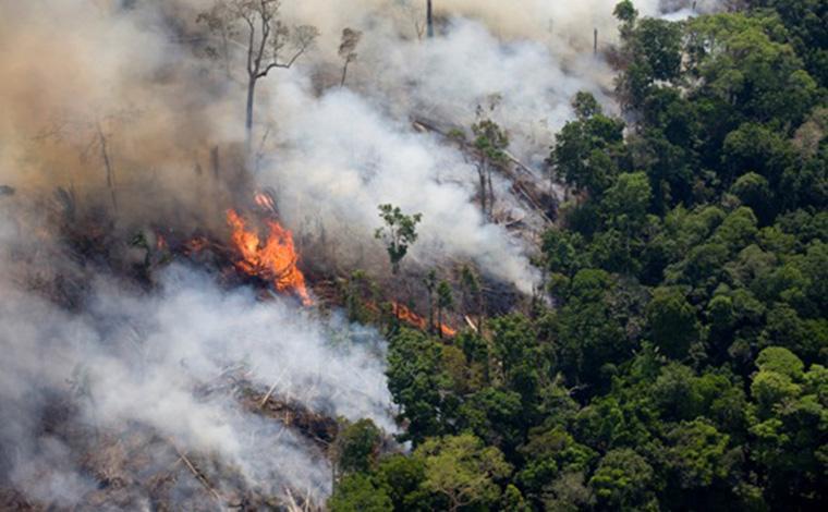 Bombeiros alertam para risco de queimadas com o tempo seco