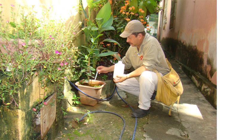 SES anuncia R$ 18 milhões para controle do Aedes aegypti