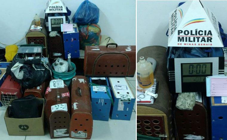Polícia prende 97 pessoas promovendo rinha de galos em Funilândia