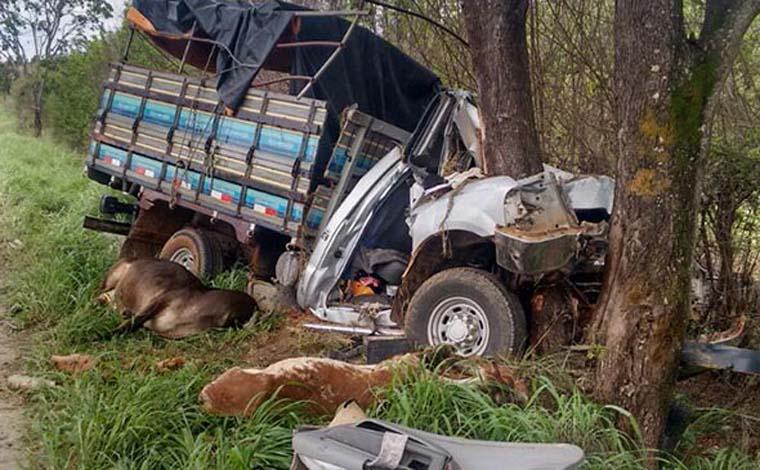 a201832703f ... Foto  Via WhatsApp - Colisão deixou ocupantes da caminhonete feridos e  matou animais