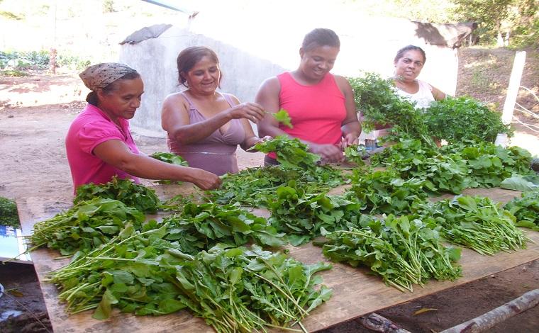 Governo de Minas seleciona produtores de alimentos para festival em Belém