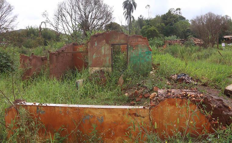 Multas por crimes ambientais serão convertidas em prestações de serviços