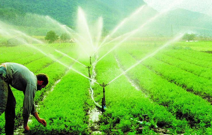 Epamig apresenta soluções para irrigação de baixo custo