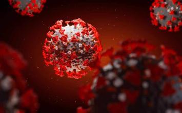 Brasil registra 1.264 mortes por coronavírus em 24 horas e passa de 1,5 milhão de infectados