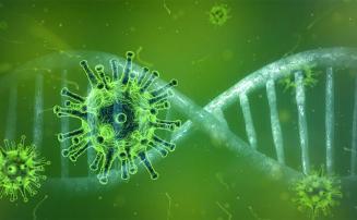Coronavírus: novo boletim epidemiológico é divulgado em Sete Lagoas; total de casos chega a 386