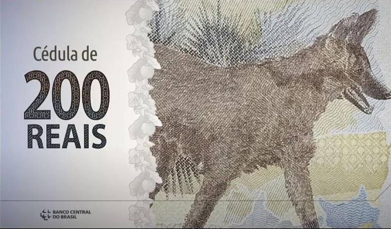 Banco Central lança cédula de R$ 200 com lobo-guará; nota entra em circulação nesta quarta-feira