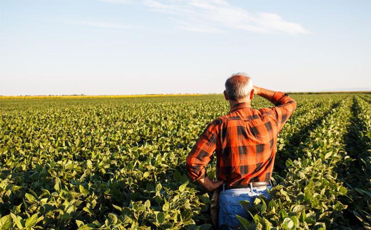Declarações de Imposto sobre a Propriedade Territorial Rural (DITR) devem ser entregues até 29/09