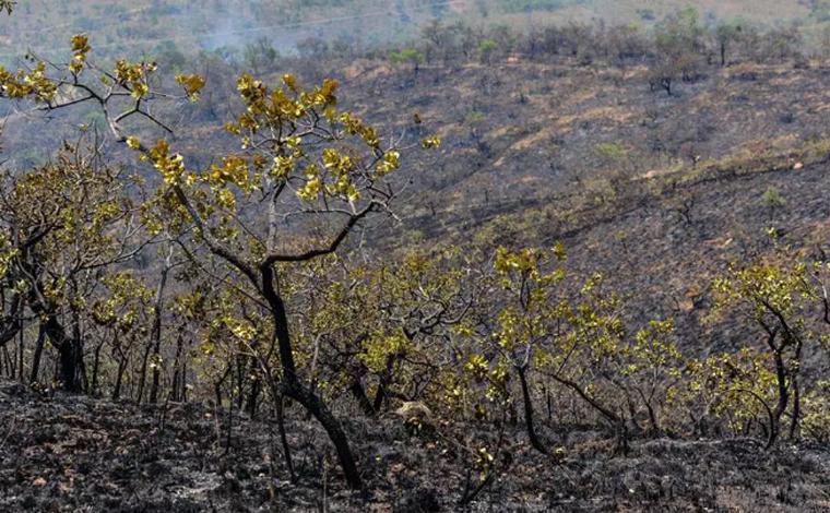 Após 10 dias de combate ao incêndio na Serra do Cipó, bombeiros conseguem controlar o fogo