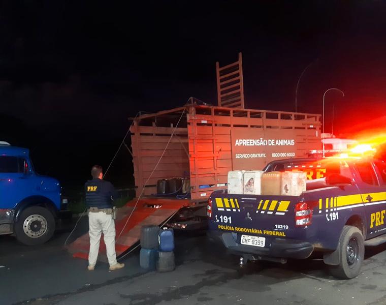 PRF apreende mais de 400 litros de óleo diesel armazenados e vendidos ilegalmente em cidade mineira