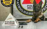 Polícia Militar prende dois jovens por tráfico de drogas em Pedro Leopoldo