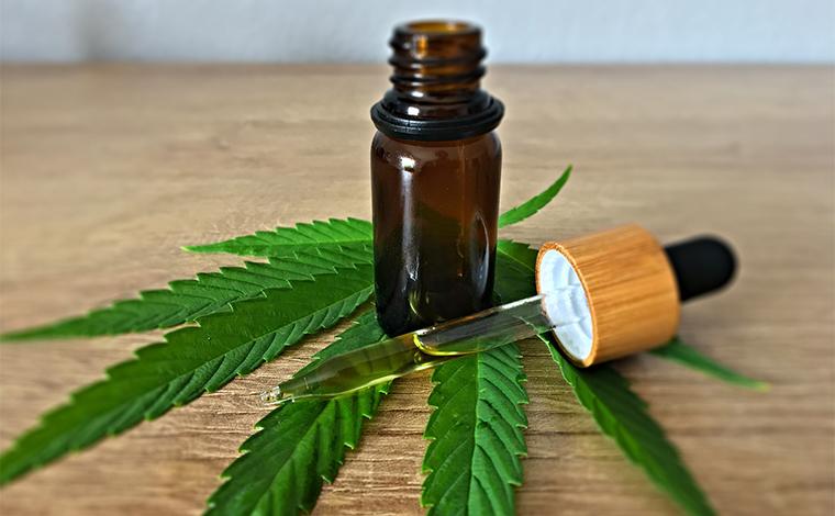 Anvisa autoriza produto à base de cannabis em projeto com a Fiocruz