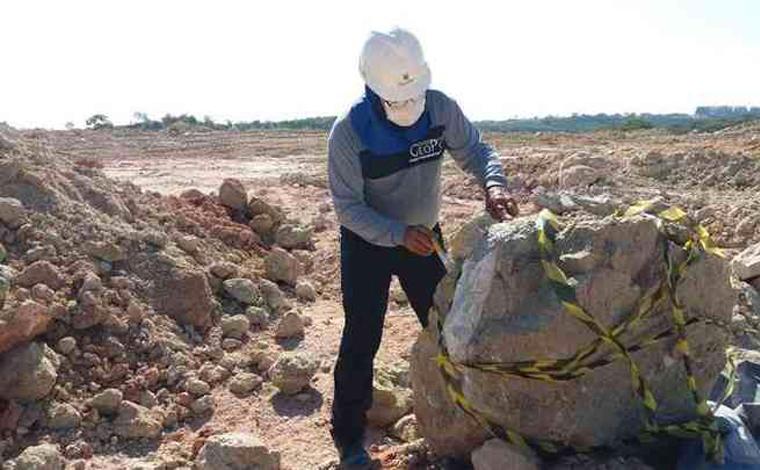 Bloco de arenito de 700 kg com fósseis de dinossauros é encontrado em Minas Gerais