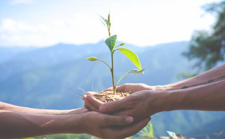 Curso da Escola Técnica de Sete Lagoas comemora Dia Mundial do Meio Ambiente