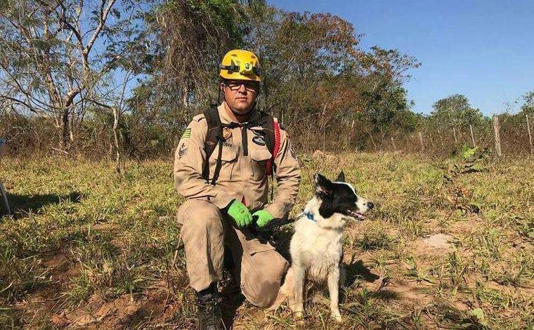 Serial killer do DF: cadela que atuou em Brumadinho ajuda nas buscas por Lázaro
